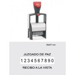 Numerador 2010/P